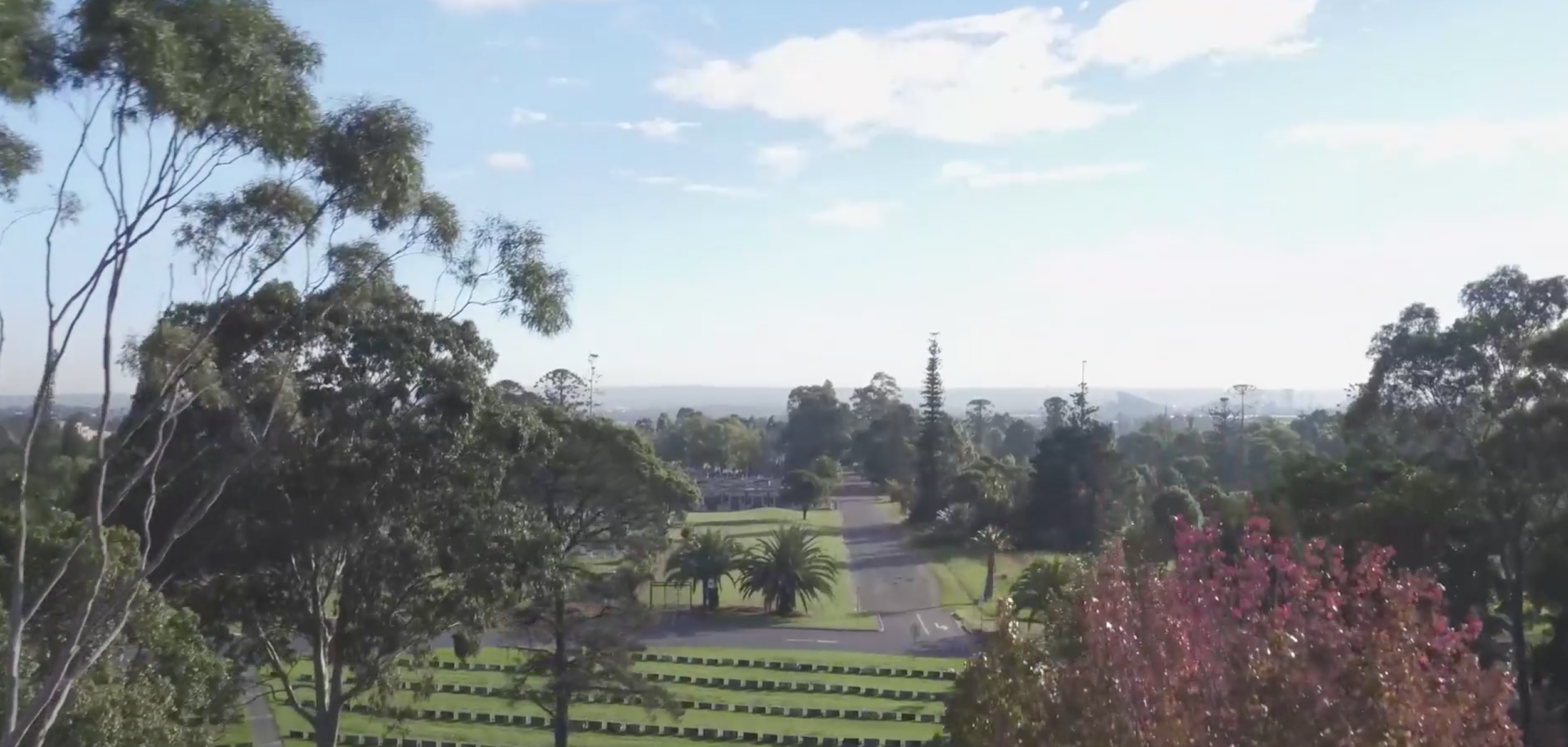 Drone image of Rookwood Cemetery