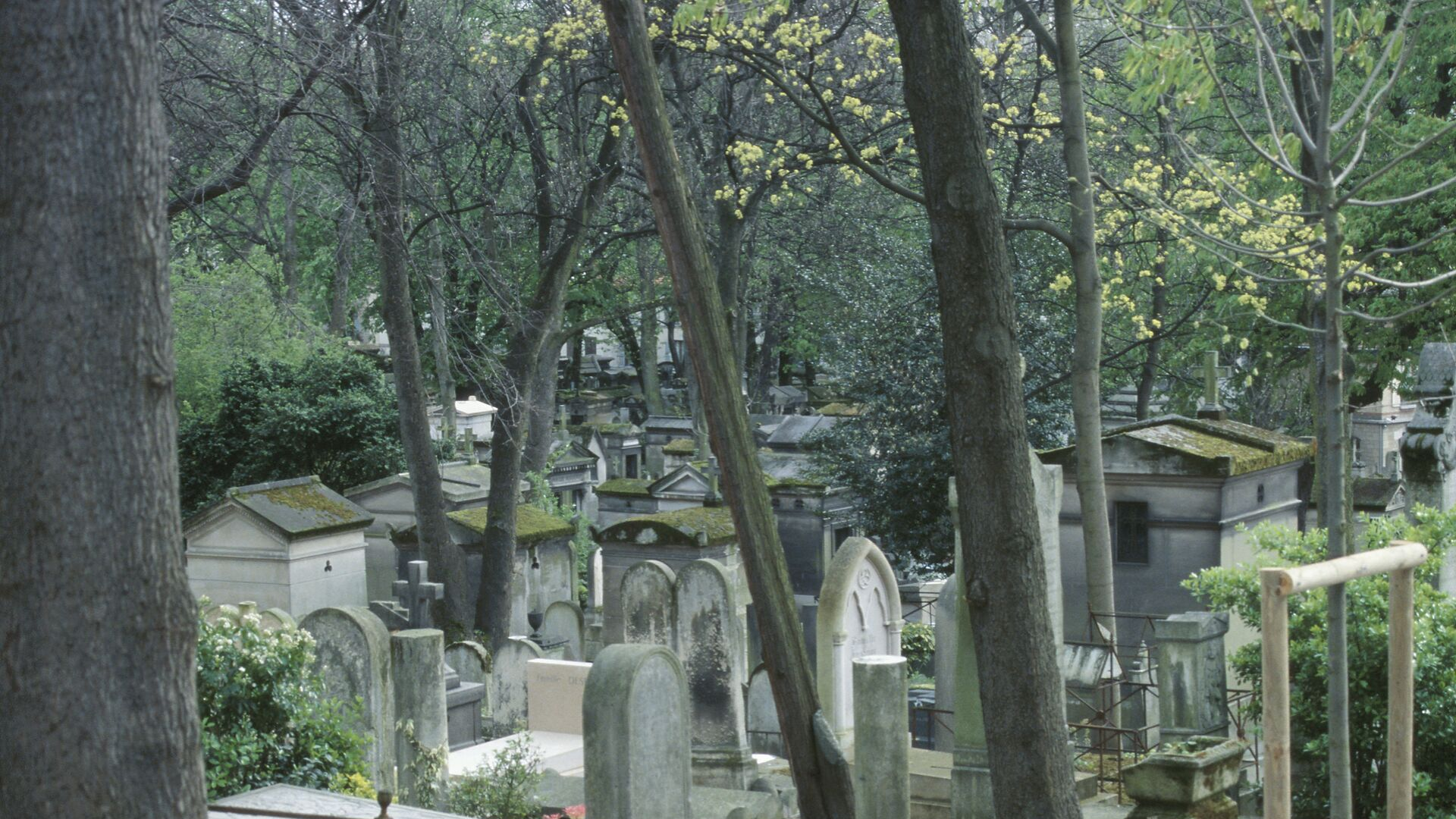 Photo of a cemetery crowded with headstones